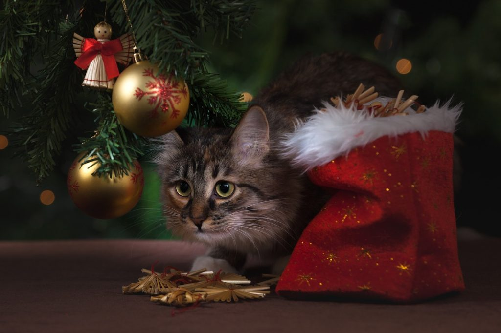 подарки на новый год своими руками